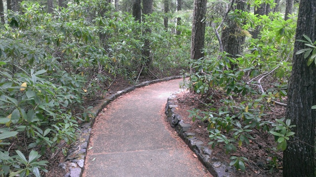 The trail to the falls is wheelchair assessable