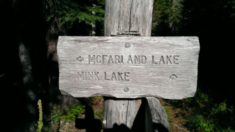 Mink lake sign