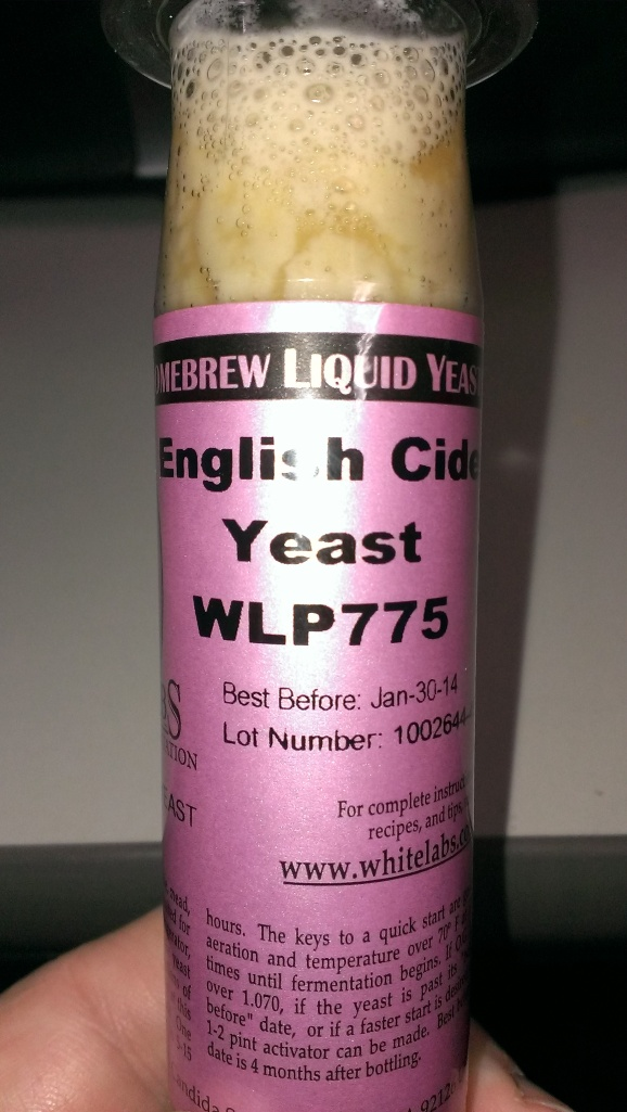 This years yeast of choice