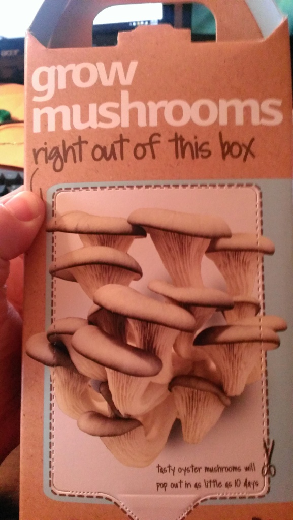 Mushroom kit in the box.
